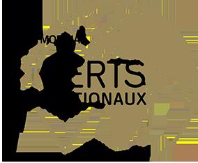 Ordre Mondial des Experts Internationaux